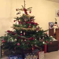 Simply Fit Xmas Tree